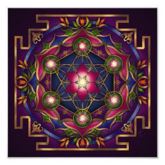 Growth Mandala Print by Rachel C Bemis Art Photo