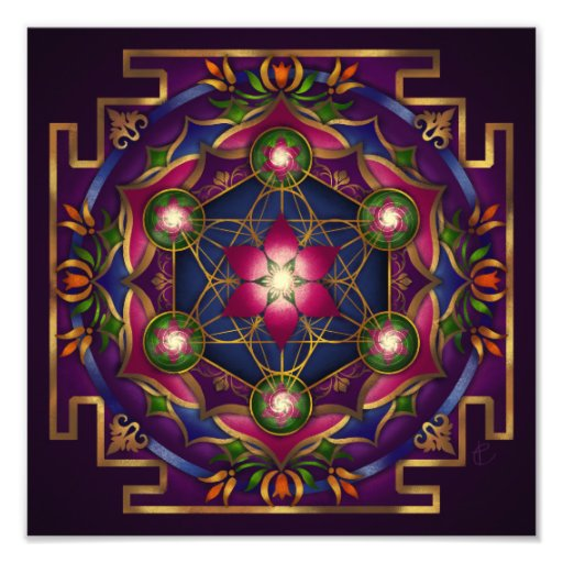 Growth Mandala Print by Rachel C. Bemis Art Photo