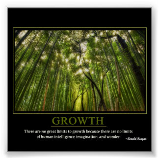 Growth Poster