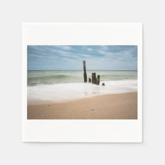 Groynes on shore of the Baltic Sea Disposable Napkins