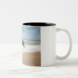 Groynes on shore of the Baltic Sea Two-Tone Coffee Mug