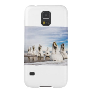 Groynes on the Baltic Sea coast Cases For Galaxy S5