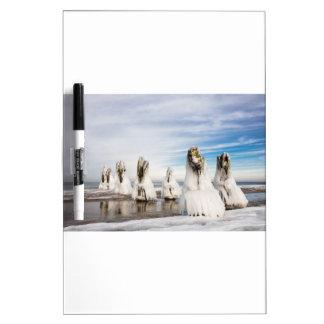 Groynes on the Baltic Sea coast Dry Erase Board