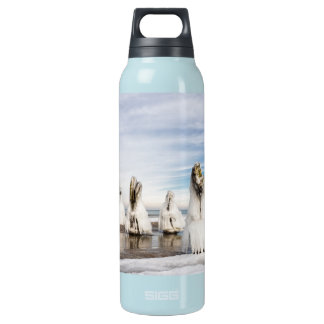 Groynes on the Baltic Sea coast Insulated Water Bottle