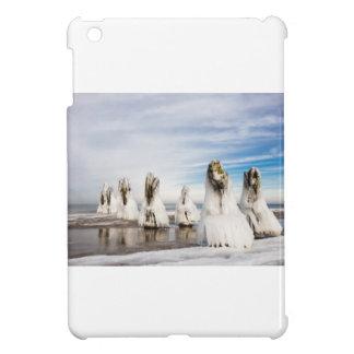 Groynes on the Baltic Sea coast iPad Mini Case
