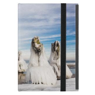 Groynes on the Baltic Sea coast iPad Mini Cover