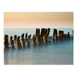 Groynes on the Baltic Sea coast Postcard