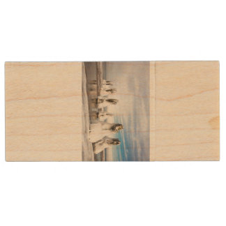 Groynes on the Baltic Sea coast Wood USB 2.0 Flash Drive