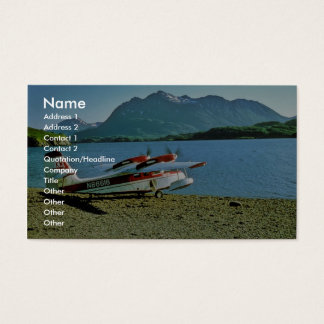 Grumman Widgeon N86616 Business Card