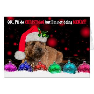 Grumpy Border Terrier Dog Wearing A Santa Hat, Wit Card