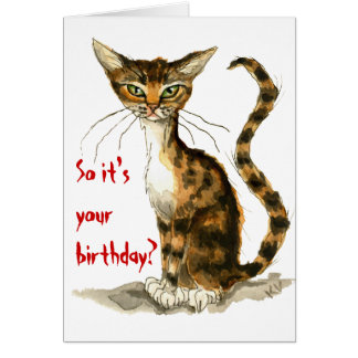 Grumpy brown tabby cat funny birthday card