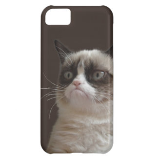 Grumpy Cat Glare iPhone 5C Cover