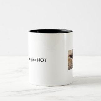 grumpy cat mug for grumpy people