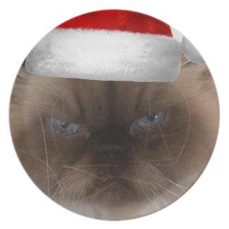 Grumpy Christmas Cat Plate
