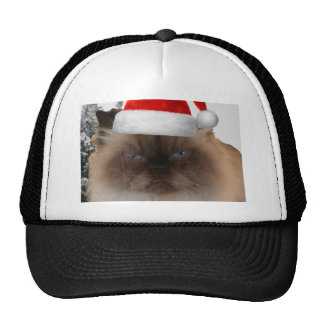 Grumpy Christmas Cat Trucker Hat
