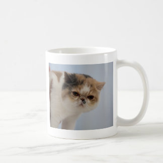 Grumpy Face Cat Classic White Coffee Mug