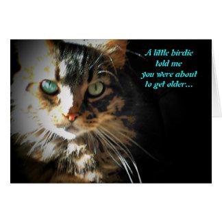Grumpy Kitty Eats Birdy  birthday card