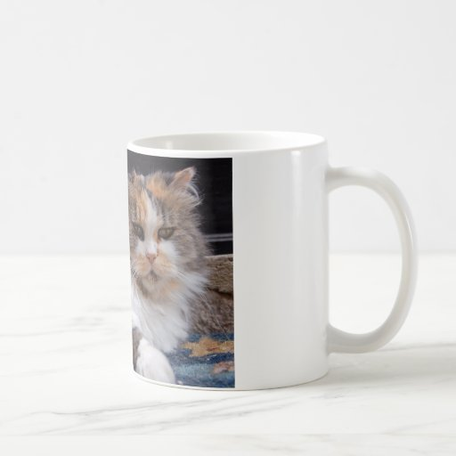 Grumpy Kitty Photo Mugs