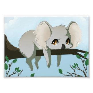 Grumpy koala bear art photo