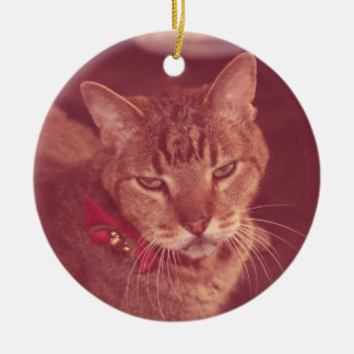 Grumpy Old Deaf Tabby Ornament