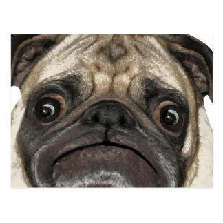 Grumpy Puggy Gifts Postcard