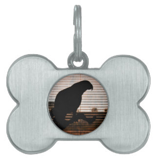 Grunge African Grey Parrot Silhouette Pet ID Tag
