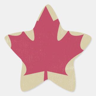 grunge canadian flag star sticker