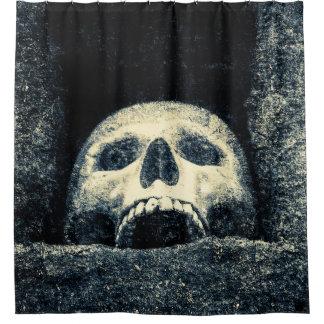 Grunge Grinning Skull In A Shrine