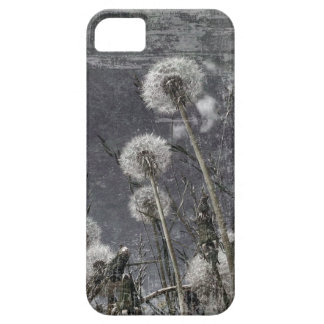 Grunge image of dandelion clocks iPhone 5 covers