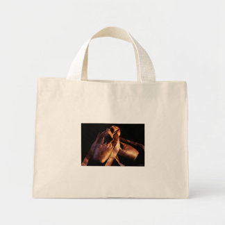 Grunge Pointe Shoes Bag