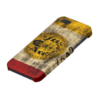 Grunge San Diego Flag iPhone 5/5S Covers