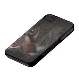 Grunge Tabby Cat Face in Shadow iPhone 4 Case-Mate Case