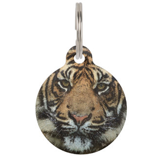 Grunge Tiger Pet Tags