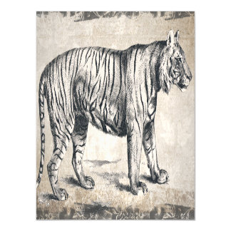 Grunge vintage de faune de tigre décorative