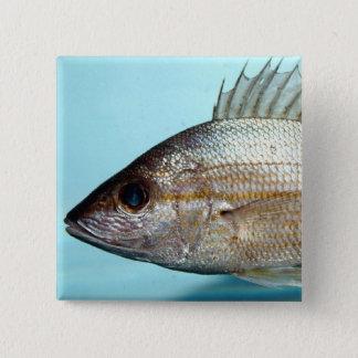 Grunt Fish 2 Inch Square Button