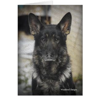 GSD Note Cards