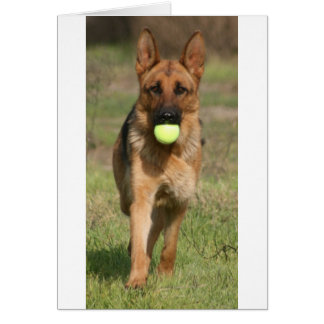 GSD with Tennis Ball Greeting Card