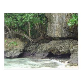 Guam Lava Beach Postcard