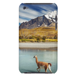 Guanaco crossing the river in Torres del Paine iPod Case-Mate Case