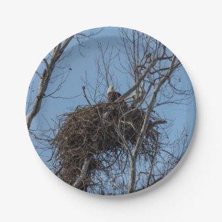 Guarding Eagle Paper Plate