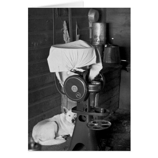 Guarding the Cream Separator, 1936 Greeting Card