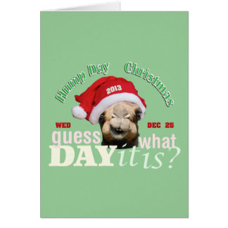 Guess what day?  Christmas Hump Day Greeting Cards