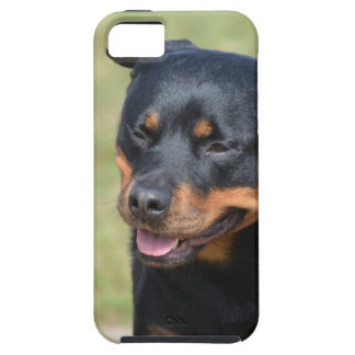 Guileless Rottweiler iPhone 5 Cover