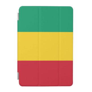 Guinea Flag iPad Mini Cover