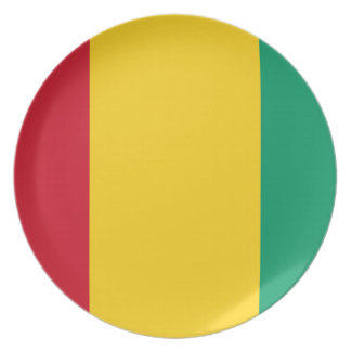 Guinea National World Flag Party Plate