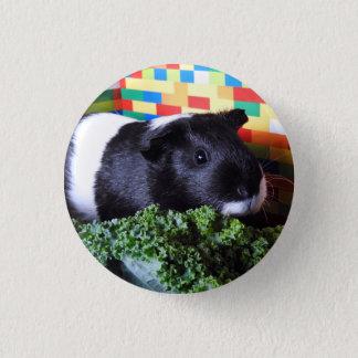 Guinea Pig 1 Inch Round Button