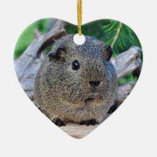 Guinea Pig Ceramic Heart Ornament