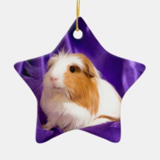 guinea pig ceramic star ornament