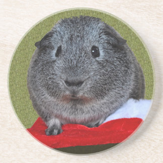 Guinea Pig Christmas Beverage Coaster