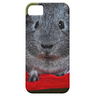 Guinea Pig Christmas iPhone 5 Cases